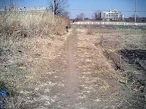 徒歩道の画像