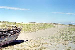 土堤の画像2