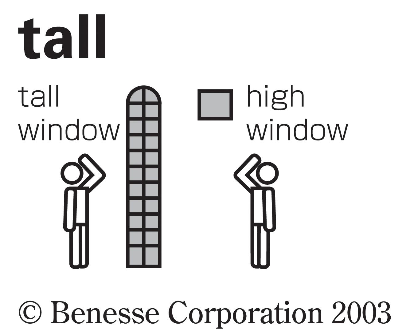 tall02.jpg