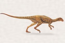 アギリサウルス・ラウダーバッキ