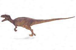 アロサウルス・フラギリス