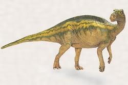 バクトロサウルス・ジョンソニ