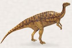 カンプトサウルスの一種