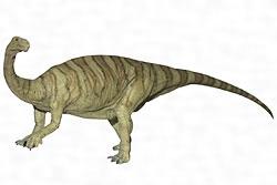 ルーフェンゴサウルス・フェネイ
