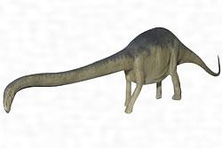 マメンチサウルス・ホチュアネンシス