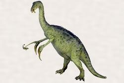 テリジノサウルス・ケロニフォルミス