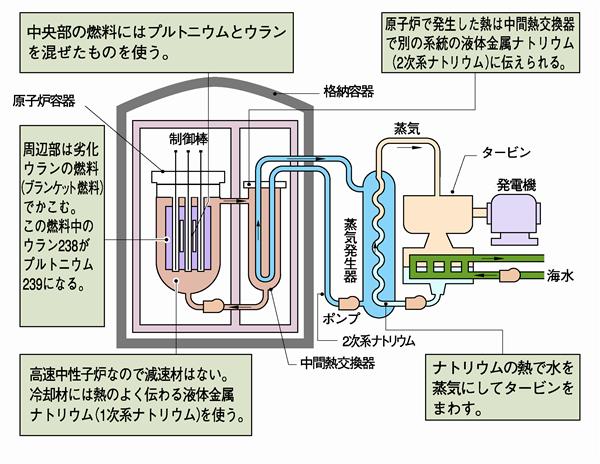 高速増殖炉