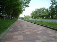 インターロッキングブロック舗装