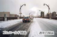 物理系凍結抑制舗装弾性材圧入型