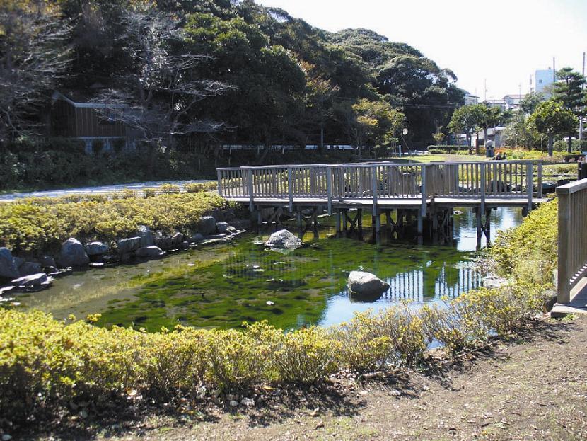 泉が森湧水及びイトヨの里泉が森公園