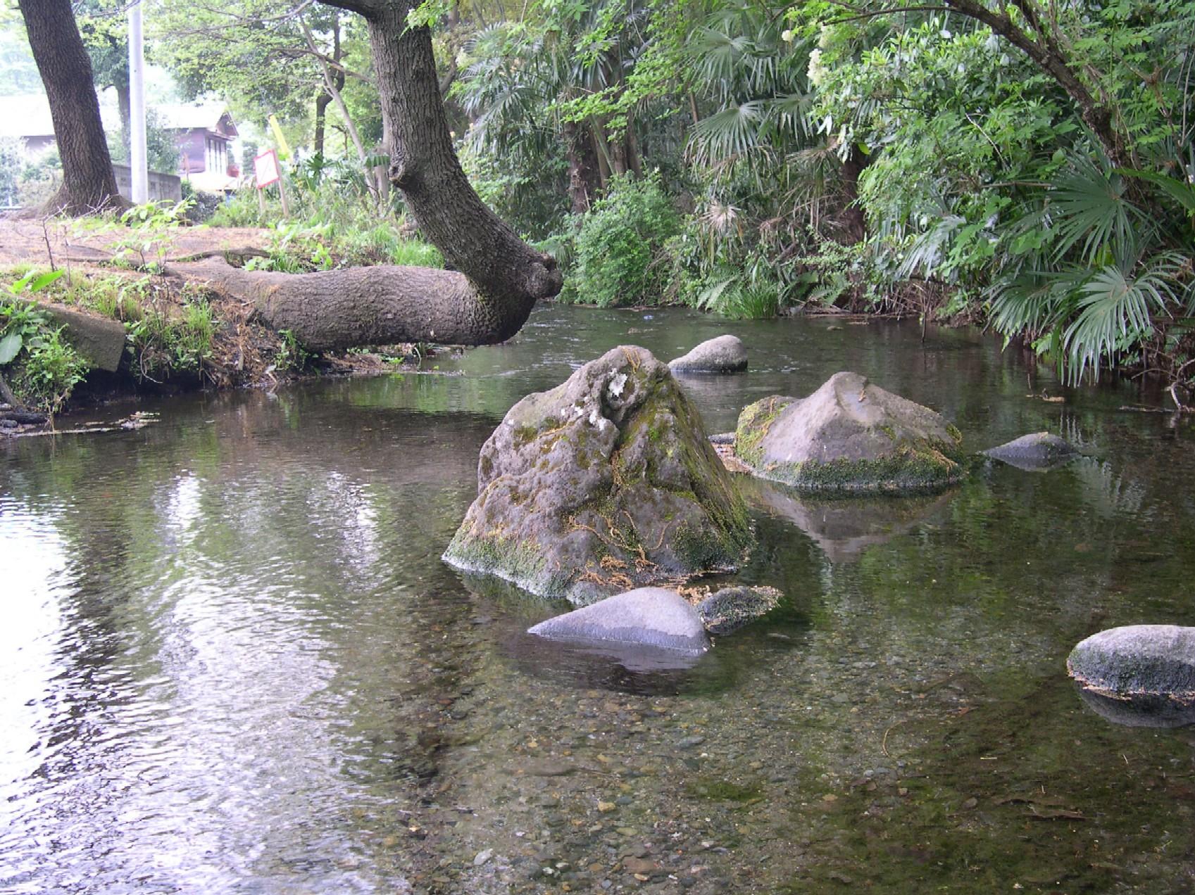 落合川と南沢湧水群