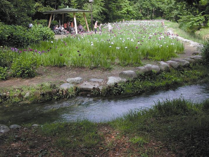 行田の沢清水