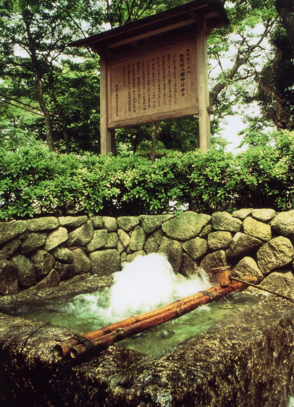 加賀野八幡神社井戸