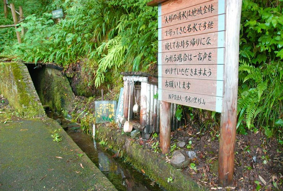 大杉の清水
