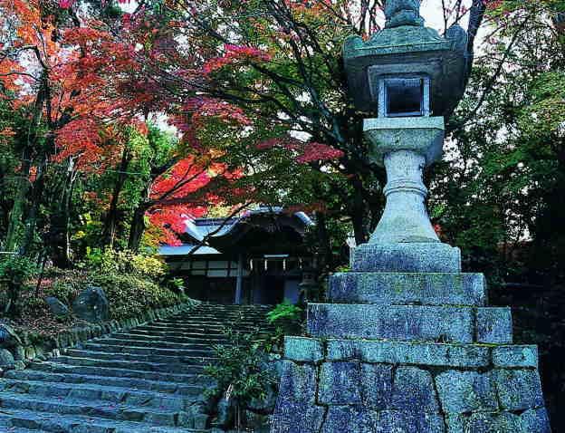 枚岡神社の社叢