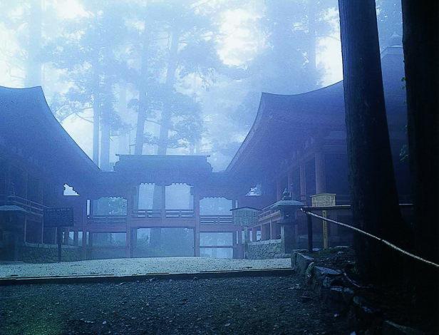 比叡山延暦寺の杉と香