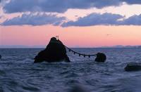 写真:夫婦岩