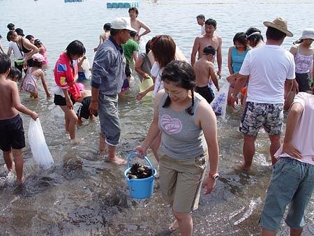 元和台海浜公園
