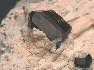 バーガー電気石