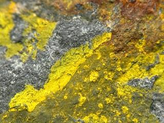 硫カドミウム鉱