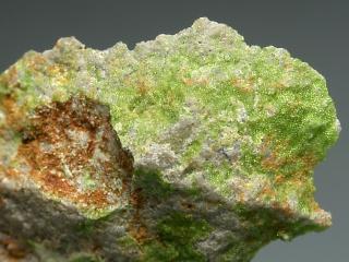 フィリップスボーン石