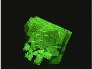 燐重土ウラン鉱