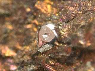 スペリー鉱