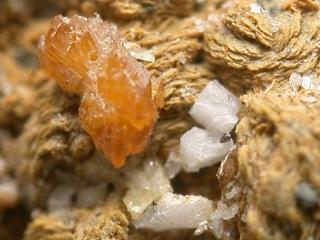 ウシュコフ石