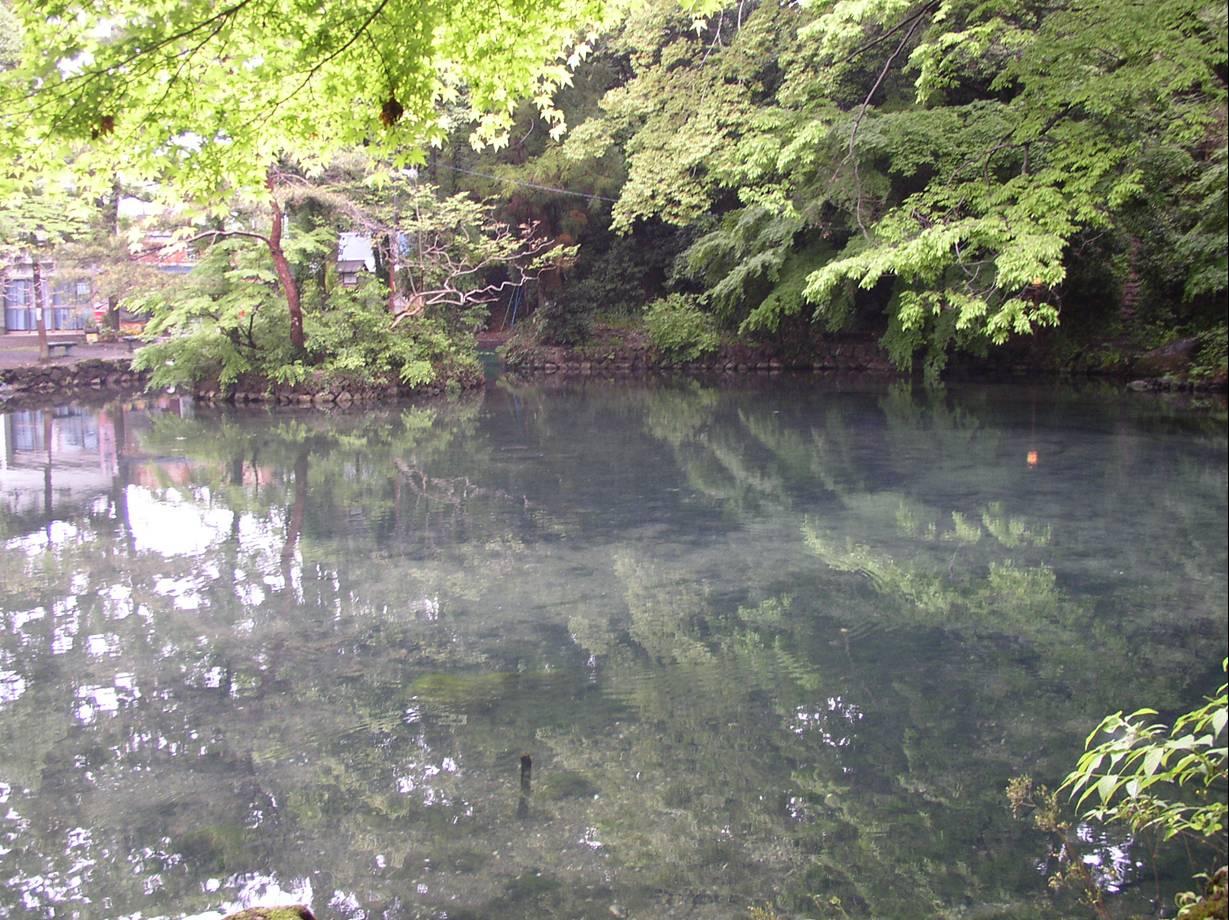 出流原弁天池湧水