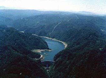 奧定山渓国有林水源の森