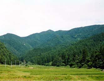 七滝水源かん養保安林