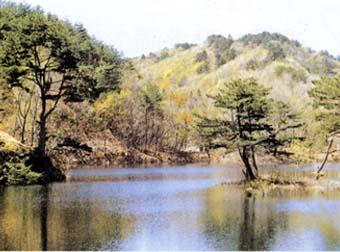 蓋沼水源の森