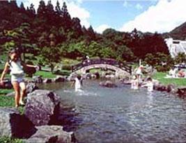 亀田川水源の森