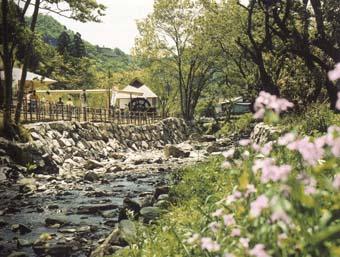 日本水の森