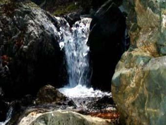 城峰神の泉水源の森