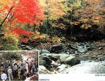 横浜市有道志水源かん養林