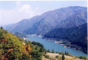 小原山水源の森