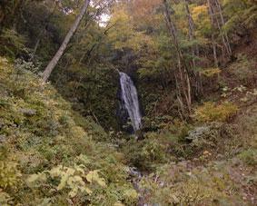 八ヶ峰水源の森