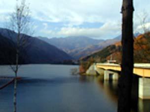 笛吹川水源の森