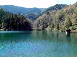 与保呂水源の森