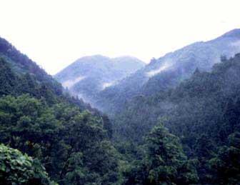 川久保水源の森