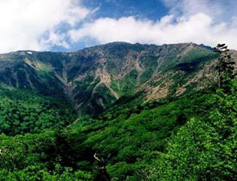 早池峰水源の森
