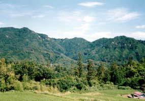 玉峰山水源の森