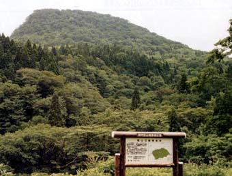 冠山水源の森
