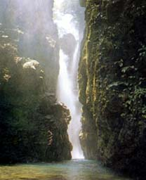 轟山水源の森