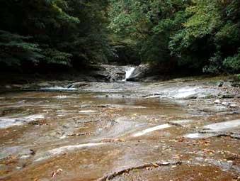 滑床水源の森