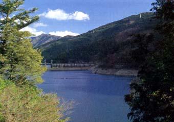吉野川源流の森