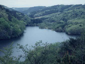 谷山水源の森