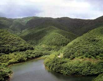 雉鳴水源の森
