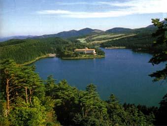 山下池の水源の森